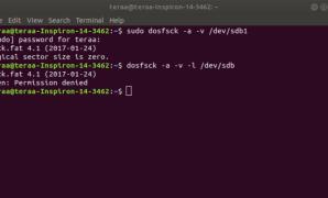 Command Line Copy Paste Ubuntu