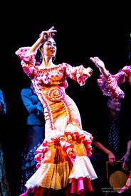 morena_flamenco-7459