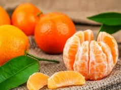 Rekomendasi Vitamin Penguat Kandungan Terbaik