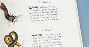 Misteri Codex Seraphinianus