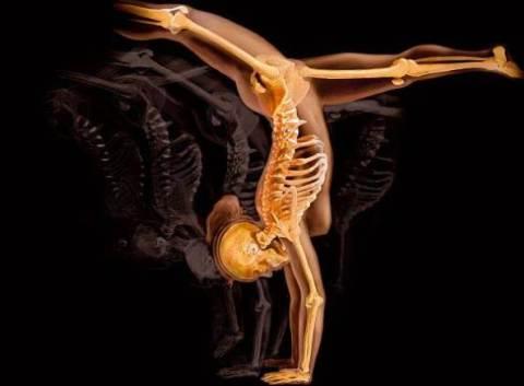 imagencuerpo-humano12
