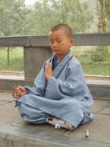 budista terapia gestalt madrid