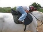 Postgrado en Equitación Terapéutica (6a edición) de la Universidad de VIC