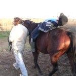 Niño en sesión de Terapia con caballo