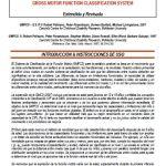 El Sistema de Clasificación de la Función Motriz (GMFCS)