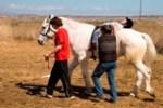 Cursillo Terapia asistida con caballos (TAC)  impartido por Humanymal