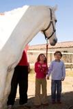 Terapias asistidas con caballos y Equinoterapia