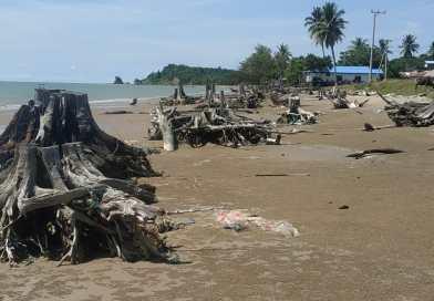 Abrasi Pantai Sungai Taiwan, Warga Minta Pemerintah Turun Tangan Mengatasi
