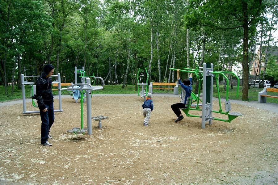 Projekt ścieżki zdrowia nad Zalewem Witoszówka w Świdnicy