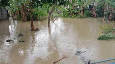 Diguyur Hujan Lebat, Dusun II Desa Buya Terendam Banjir