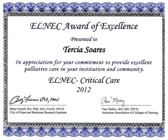 ELNEC-AwardOfExcellence