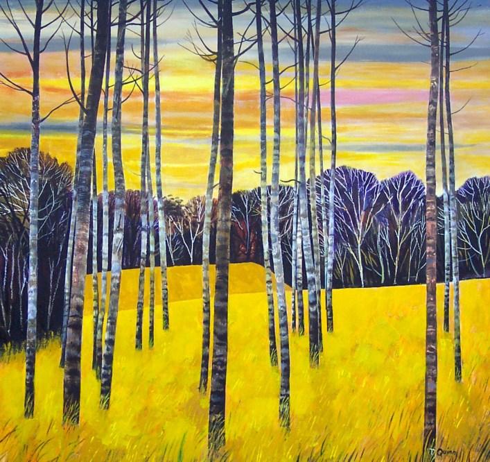 Birch-Autm-Skies