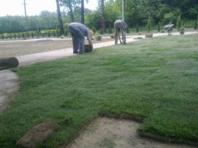 formowanie trawnika 1