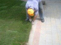 przycinanie przy krawężnikach trawy