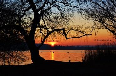 La prima foto - Tramonto sul lago di Varese