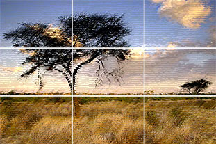 rule of thirds image