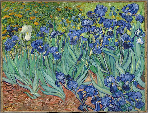 The flower paintings of vincent van gogh teresa bernard oil paintings irises van gogh painting mightylinksfo