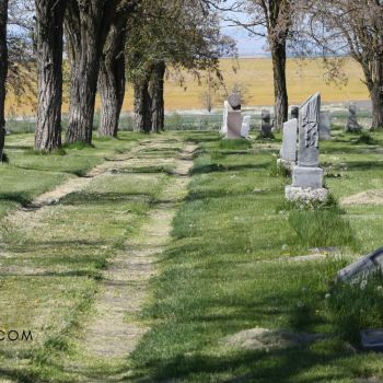 How To Plan A Gravestone Rubbing Field Trip