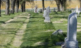 How To Plan A Gravestone Rubbing Field Trip