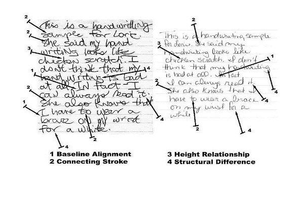 Finding Best Handwriting Forensics Expert For Effective