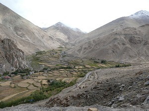Fertile Valley near Chang La Pass