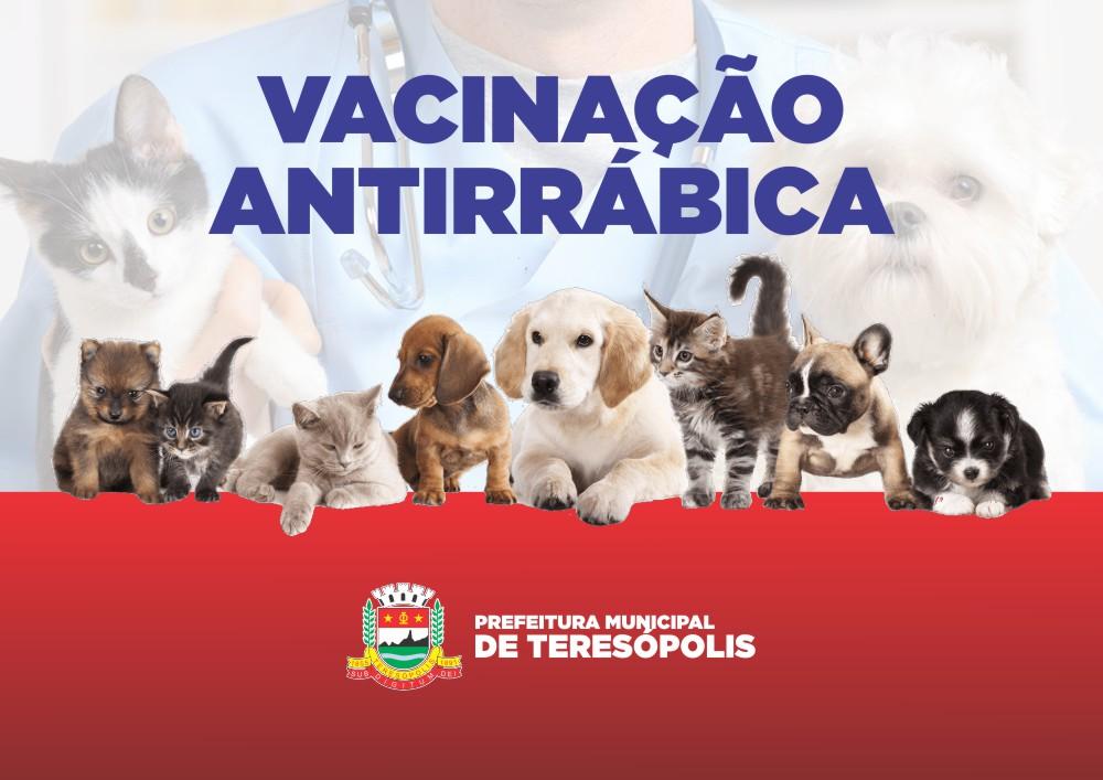 Vacinação de cães e gatos contra raiva animal atende Meudon e Castelinho esta semana