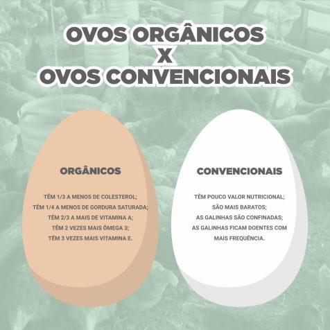 OVOS1