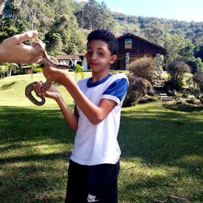 Interação com animais silvestres