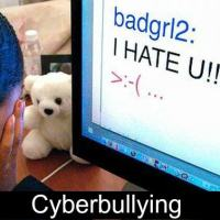 Cyberbullying - a Mother's Story, Part 1 of a 2 part series