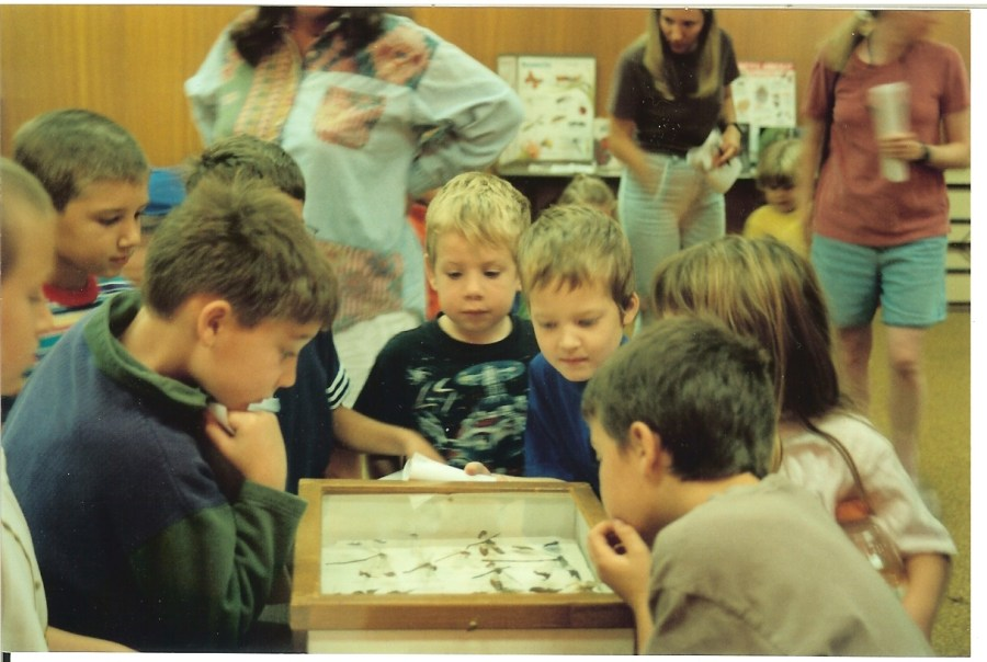 The author's son with other children, looking at a display of insects.