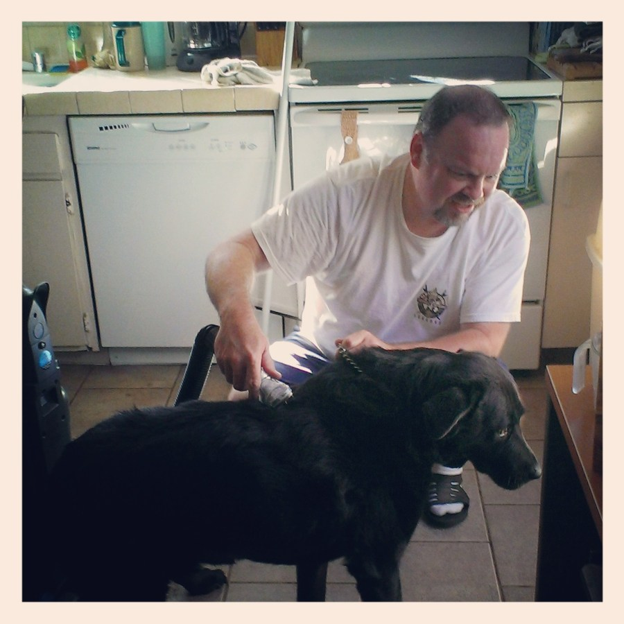 photo of the author's black lab being vacuumed by the author's husband