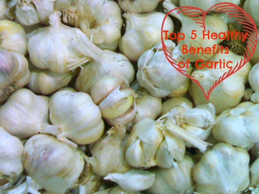 Top 5 healthy benefits of garlic