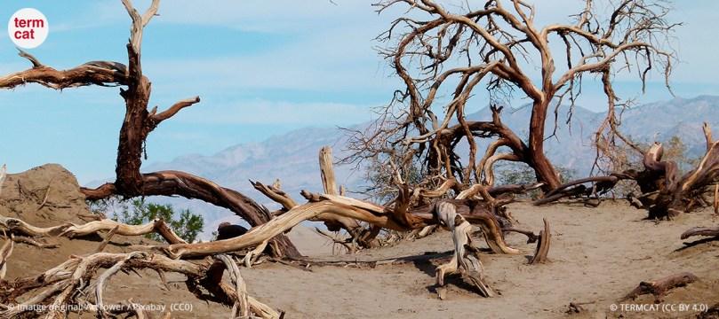 desertitzacio