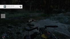 Far Cry® New Dawn_20190205153811