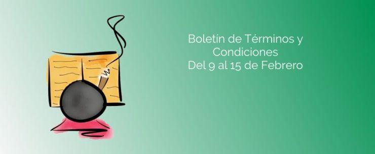 terminos_y_condiciones_boletin_9_15_febrero_2015