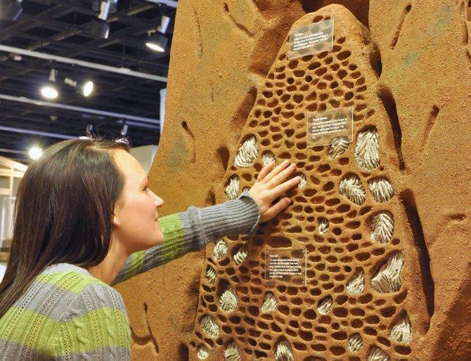STAND_ALONE-Termite_mound_exhibit_copy_t670