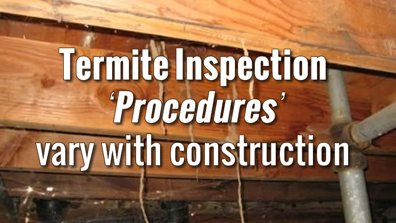 How to DIY Home Termite Inspection