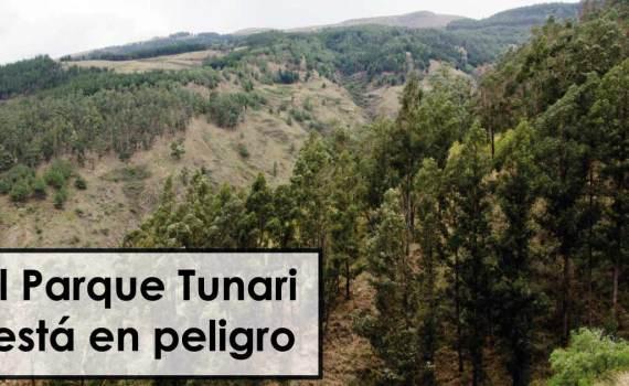 El Parque Tunari Está en peligro