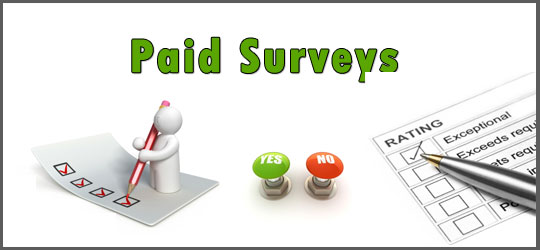 Paid To Survey