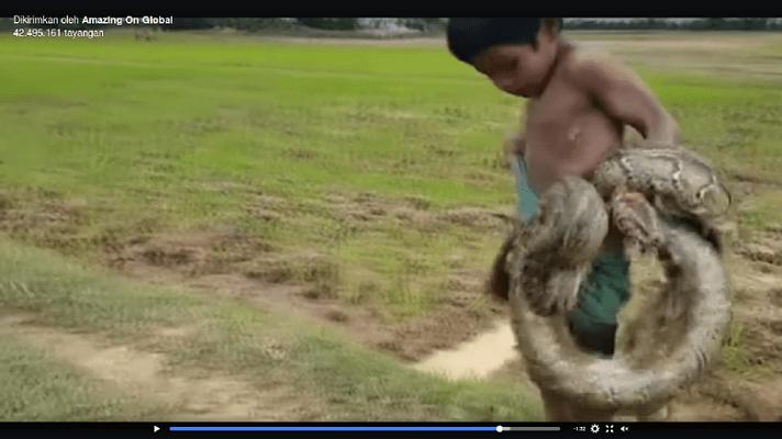 Viral Video 2 Bocah Asia Pemburu Ular untuk Bantu Keuangan Keluarga