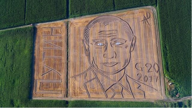 Wajah Lukisan Raksasa Putin di Persawahan Italia