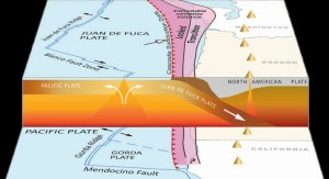 At the Cascadia subduction zone, the Juan de Fuca plate dives beneath North America (illustration courtesy of the Oregon Department of Geology and Mineral Industries)