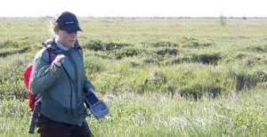 Caitlyn Clark's enthusiasm for ecological research wasn't deterred by her trip to mosquito-infested Manitoba wetlands (Photo courtesy of Caitlyn Clark)