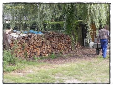 Dieser Holzstapel am Rande des Einfahrtsbereichs (vor der Garage) sollte weg. This stack should move from the entry to another place.