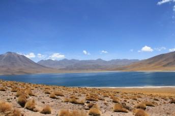 Partimos em direção às lagunas altiplânicas. Em destaque, a belíssima Laguna Miscanti