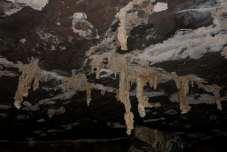 As estalactites da Caverna Angélica