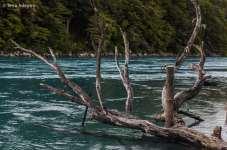 O Rio Baker fica bem ao sul da estrada, nas proximidades de Puerto Bertrand e Cochrane