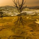 FineArt Yellowstone