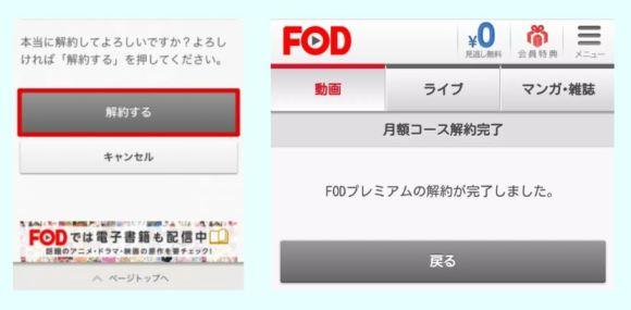 fod-newkaiyaku2