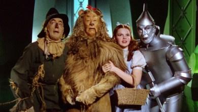 Photo of A relação entre O Mágico de Oz e a Economia